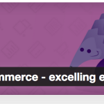 The Definitive Guide to Setting up Online Store with WooCommerce